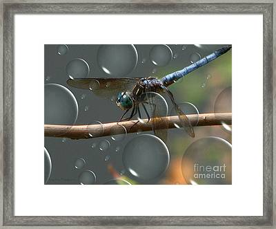 Dragonfly Opera Framed Print by Roxy Riou