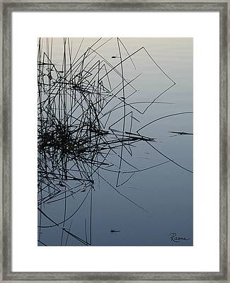 Dragonfly Reflections Framed Print
