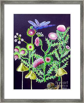 Dragonfly Thistle And Snail Framed Print by Genevieve Esson