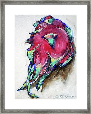 Dragonfruit Framed Print by Sheila Tajima