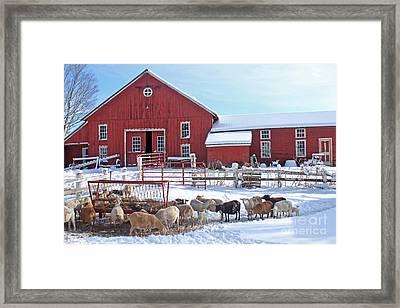 Drain Street Barn Framed Print by Jim Beckwith