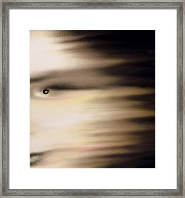 Drained Framed Print by Frances Lewis