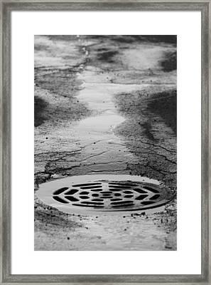 Drained Framed Print by Lauri Novak