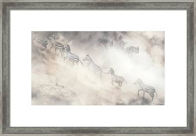 Dramatic Dusty Great Migration In Kenya Framed Print