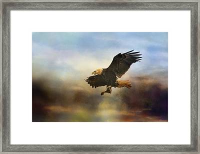 Dramatic Entrance Framed Print by Jai Johnson