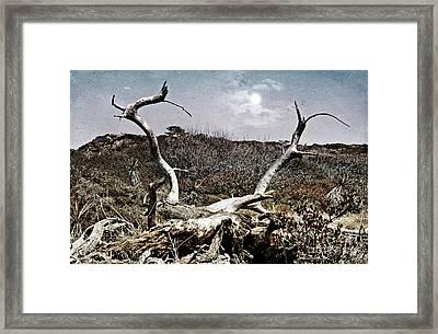 Dramatic Landscsape Framed Print