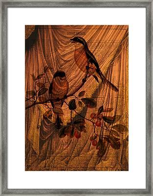 Draw Back The Curtain Framed Print by Sarah Vernon