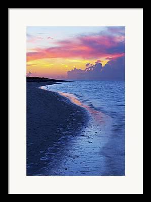 Paradise Point Framed Prints