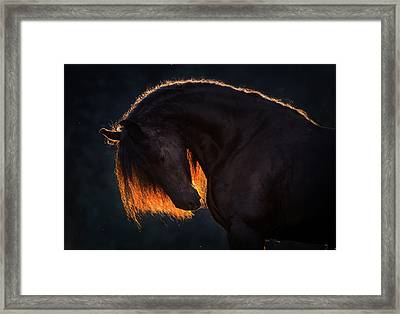 Drawn From The Darkness Framed Print