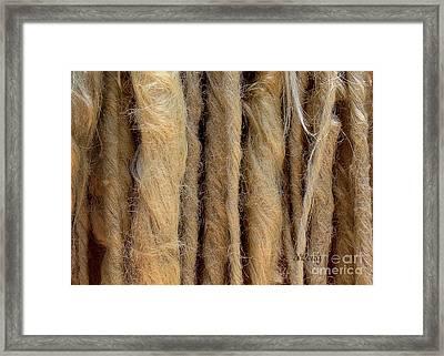 Dreads Framed Print