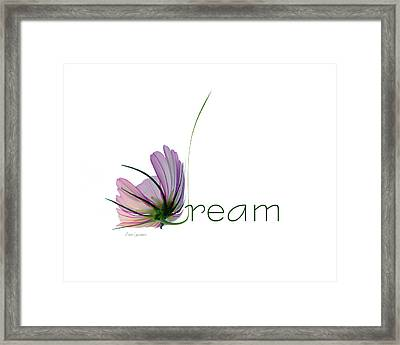 Dream Framed Print by Ann Lauwers