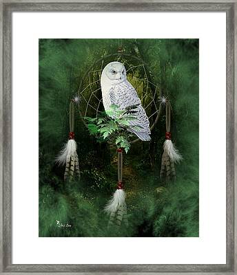 Dream Catcher White Owl Framed Print