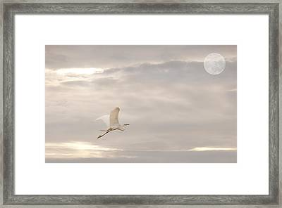 Framed Print featuring the photograph Dream Dream Dream by Gouzel -