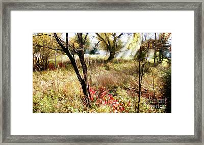 Dream Haven Framed Print by Isaiah Moore