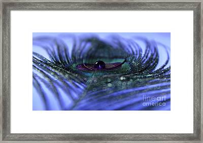 Dream In Sapphire Framed Print