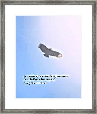 Dream Framed Print by John Feiser