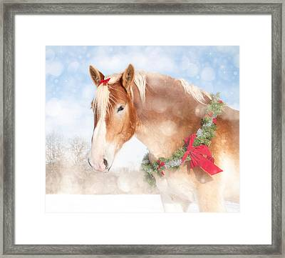 Dream Of A Gift Horse Framed Print