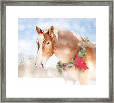 Dream Of A Gift Horse Framed Print