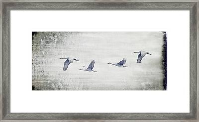 Dream Sequence Framed Print