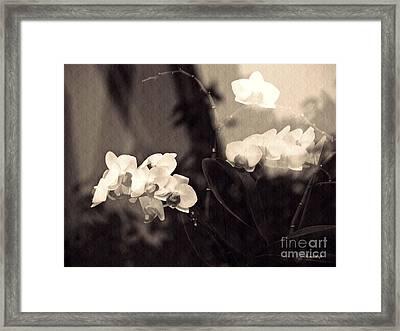 Dream State  Sepia Framed Print