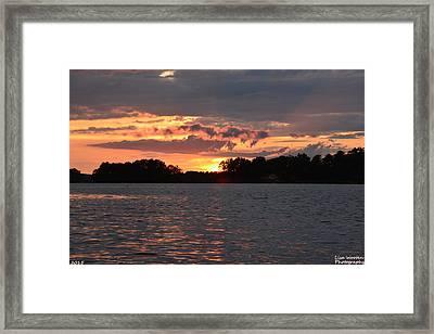 Dream Weaver Framed Print by Lisa Wooten