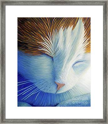 Dream Within A Dream Framed Print by Brian  Commerford