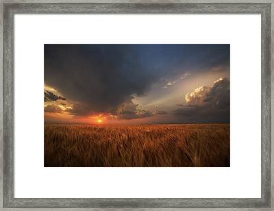 Dreamcatcher Framed Print by Thomas Zimmerman