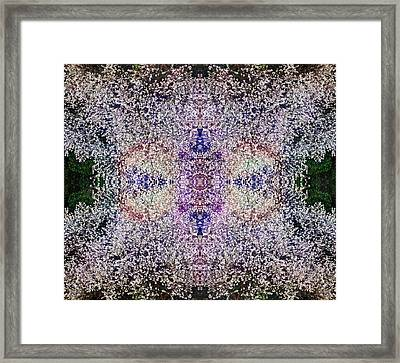 Dreamchaser #4892 Framed Print