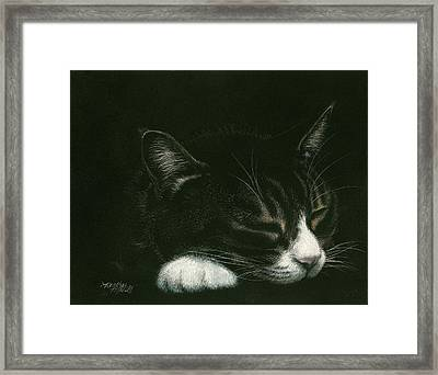 Dreamer Framed Print by Heather Mitchell