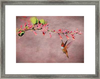 Dreamin' In Pink Framed Print by Donna Kennedy