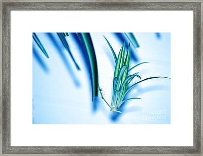 Dreaming Abstract Today Framed Print by Susanne Van Hulst