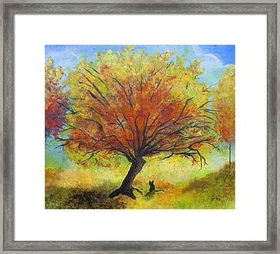 Dreaming Amber Framed Print
