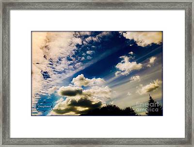 Dreaming  Framed Print by MaryLee Parker