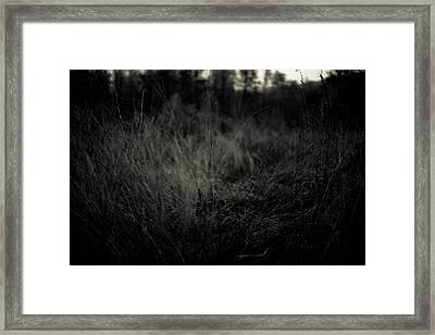 Framed Print featuring the photograph Dreaming In by Shane Holsclaw