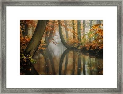 Dreaming Framed Print by Martin Podt