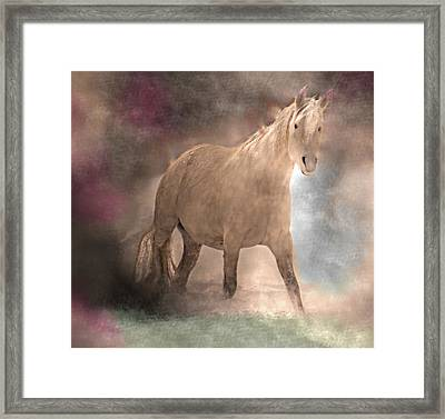 Dreaming Of A Magical Horse Framed Print