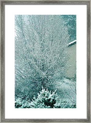Dreaming Of A White Christmas - Winter In Switzerland Framed Print