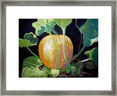 Dreaming Of Fall Framed Print by Diane Frick