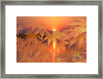Dreaming Of Fall Framed Print