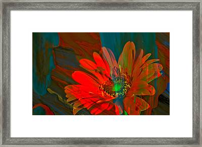 Framed Print featuring the photograph Dreaming Of Flowers by Jeff Swan