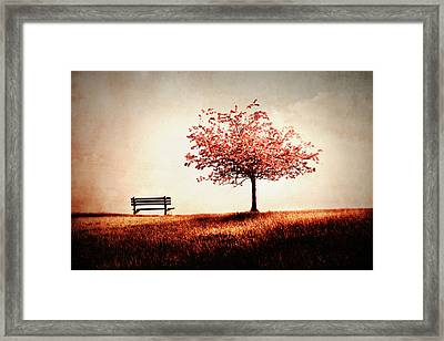 Dreaming Of Spring Framed Print by Julie Hamilton