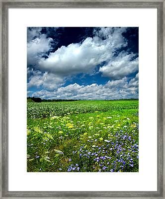 Dreaming Of Summer Framed Print