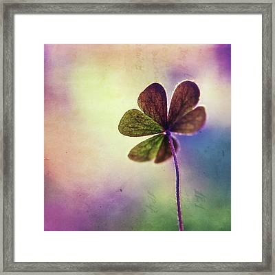 Dreaming Of You Framed Print by Tanjica Perovic