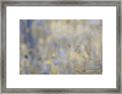 Dreamland - 01-v2 Gold Framed Print