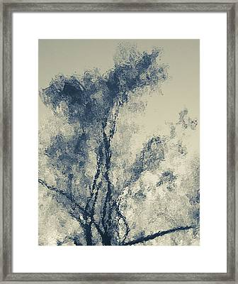 Framed Print featuring the photograph Dreamland by Tom Vaughan