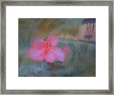 Dreams #25 Framed Print