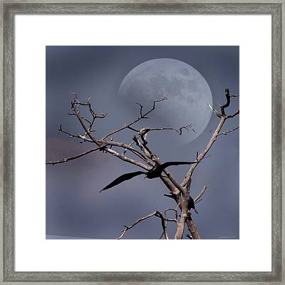 Dreams  Framed Print by Joseph G Holland