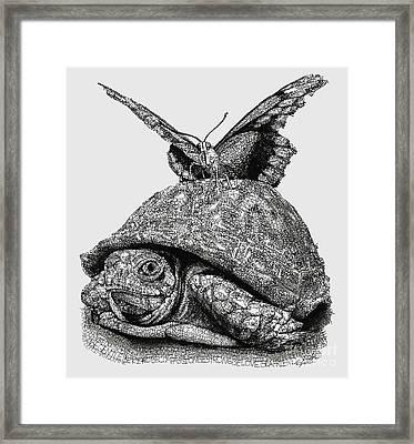 Dreams Of Flying Framed Print