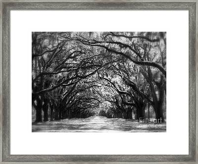 Dreams Of The Old South Framed Print