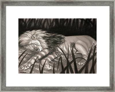 Dreams Of Zebras Framed Print by Christopher Reid